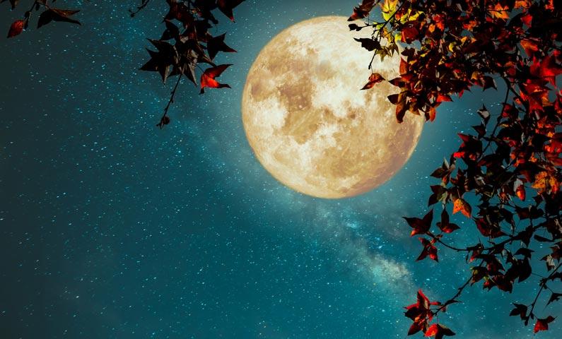 Lunar Forecast for October 2018